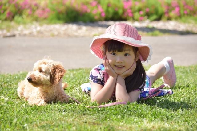 犬や猫、大切なペットに水道水とミネラルウォーターどっちがいい?